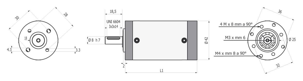Gear box RHP 42 drawing BERNIO